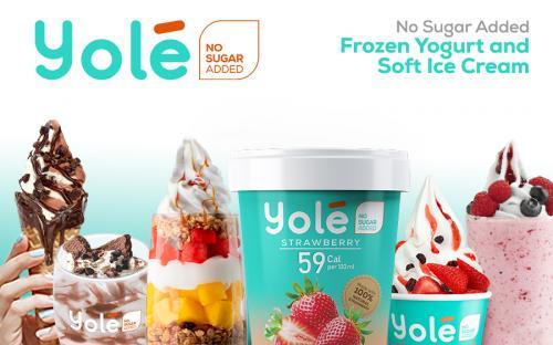 Master Franchise   Yolé Ice Cream and Frozen Yogurt